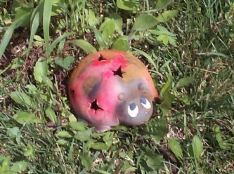 Ladybug Luminary