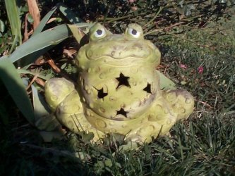 Warty the Frog